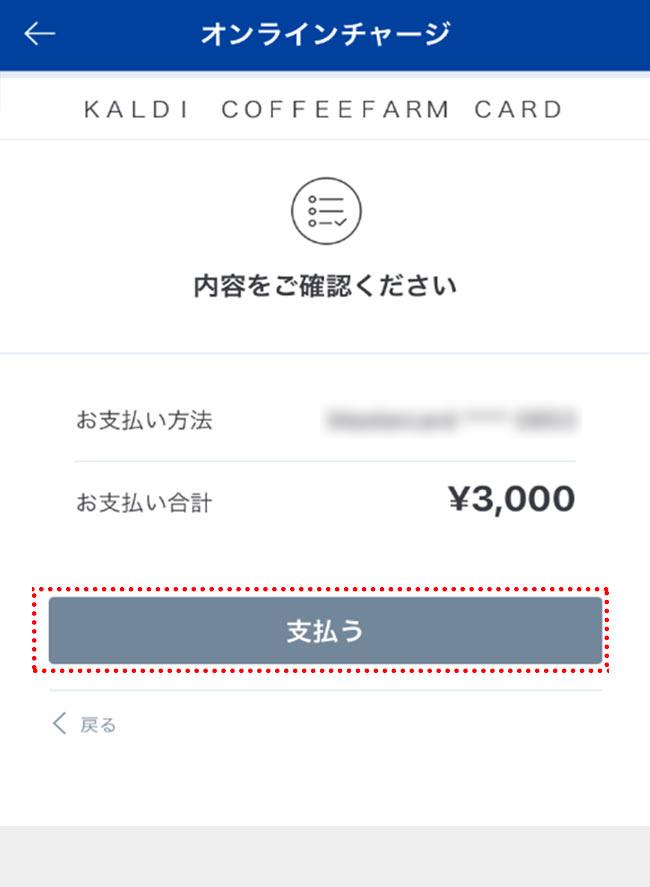 charge_07.jpg